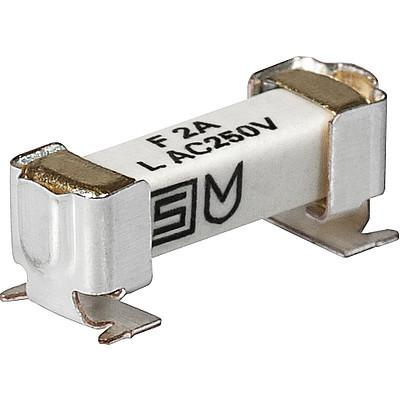 UMK 250 Surface Mount Fuse with Clip